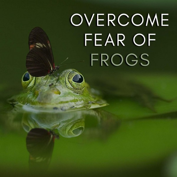 Overcome Fear Of Frogs Hypnosis