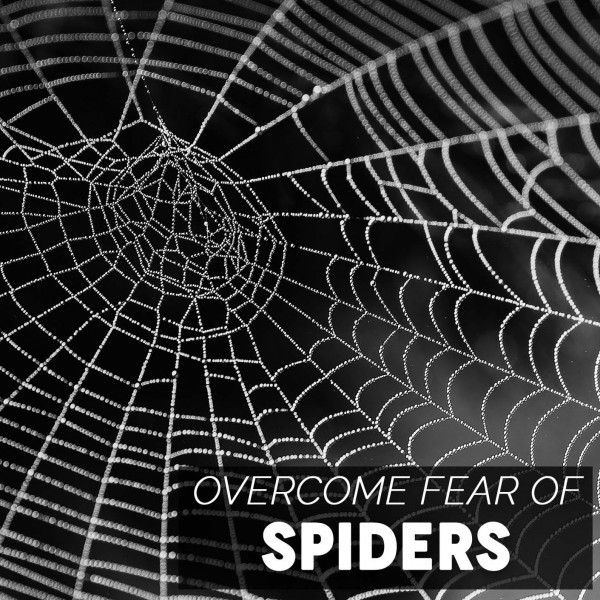 Overcome Fear Of Spiders Hypnosis